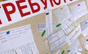 В самопровозглашенной ДНР жителей зовут на ярмарку вакансий