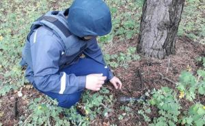 В Луганской области за неделю обнаружили 390 взрывоопасных предметов