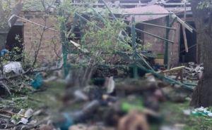 На Донбассе растет число жертв среди мирных жителей. —ОБСЕ