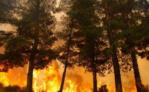 В Луганской области объявлена чрезвычайная пожарная опасность