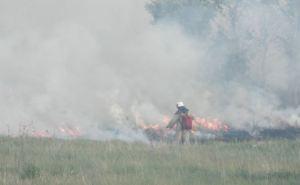 В Луганской области за сутки произошло 12 возгораний сухой травы