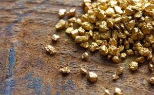 В самопровозглашенной ЛНР собираются добывать золото