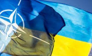 Украина не будет пока подавать заявку в НАТО. —Порошенко