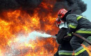 В Луганске произошел пожар в пекарне супермаркета «Спар»