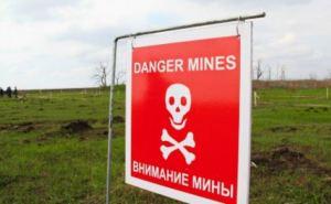 На Донбассе нужно разминировать еще 7 тыс. кв. км