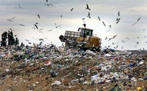 В Первомайске произошел пожар на полигоне отходов