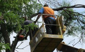 Луганские спасатели на выходных 58 раз выезжали для ликвидации последствий урагана