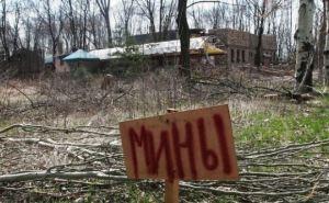 На Донбассе стартует гуманитарное разминирование