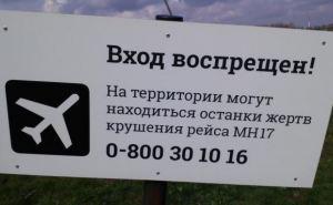 ДНР призывает ООН помочь в передаче останков, найденных на месте крушения «Боинга»