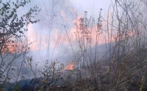 В самопровозглашенной ЛНР сохраняется угроза пожаров
