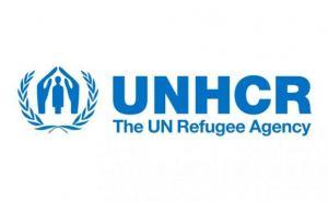 ООН направила в Луганск медикаменты
