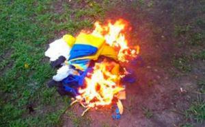 В Луганской области подростка будут судить за сожженный флага