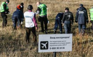 Самопровозглашенная ДНР передала Нидерландам останки тел, найденные на месте крушения «Боинга»