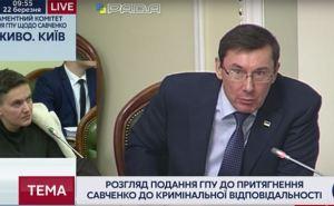 Луценко и Савченко устроили перепалку в комитете: «Жуйте гранаты»