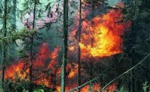 Высокий класс пожарной опасности объявили в Луганске