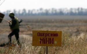 Двое мирных жителей, мужчина и женщина, подорвались на противопехотных минах в районе н.п. Золотое-4