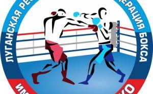 Спортсмены ЛВУФК завоевали 8 медалей на всероссийском турнире по боксу