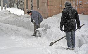 Коммунальные службы просят жителей частного сектора в снегопад сносить мусор на проездные улицы
