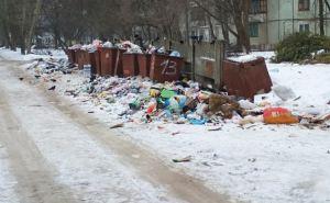 Коммунальщики Луганска во время принудительного «субботника» очистили от мусора кв. Дружбы, Суходольскую и Анри Барбюса