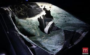 Попал под лошадь. Автомобиль не подлежит восстановлению после столкновения с лошадью. ФОТО