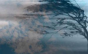 Туман и ветер ожидаются в ЛНР 15марта