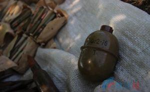 В Станице Луганской обнаружили гранаты и патроны. ФОТО