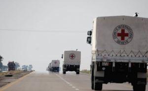 Красный крест везет более 90 тонн гуманитарной помощи