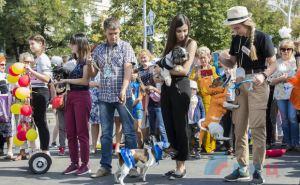 Псы и собаки дефилировали в центре Луганска. ФОТО