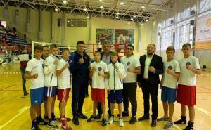 Луганские боксеры стали обладателями восьми медалей на турнире вРФ