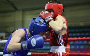 Луганские боксёры завоевал три медали в открытом кубке в Подмосковье