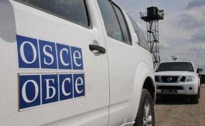 В ОБСЕ назвали количество жертв на Донбассе в этом году