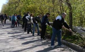 Более 10 тысяч луганчан вышли на общегородской субботник в пятницу