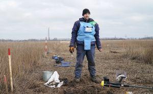 Разминированием на Донбассе занимаются 600 саперов