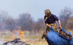 Луганчан оштрафовали на 19 тыс. рублей за сжигание сухой травы.