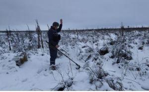 На Луганщине во время работ по разминированию обнаружили 5 взрывоопасных предметов