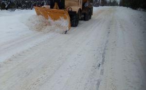 Пасечник рекомендовал главам районов заняться расчисткой снега, «во избежание травматизма»