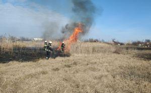 За сутки на Луганщине спасатели потушили пожары на площади более 23 га