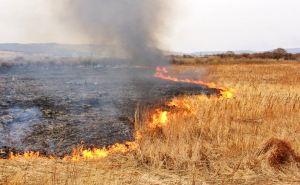 Вокруг Луганска третьи сутки бушуют степные пожары. Выгорело 520 гектаров сухой травы