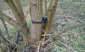Мэрия и МВД призвали луганчан отказаться от прогулок в лесопосадках, и на берегах рек