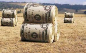 Что думают об открытии рынка земли в Луганской области?