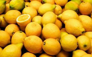 Таможня рассказала по чем в Луганск завозят лимоны