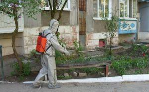 С начала карантина луганское МЧС продезинфицировало около 1,3 тысяч общественных мест. ФОТО