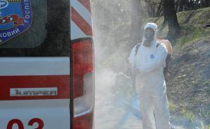 В Луганске рассказали о 384 случаях коронавируса