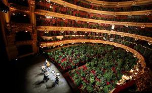 Концерт для комнатных растений прошел в Барселоне