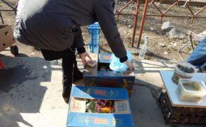 В Луганске полиция и горсовет провели 500 рейдов против незаконной торговли