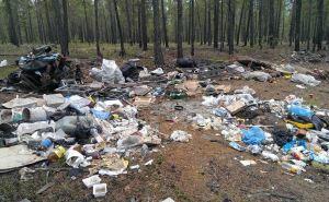 В Луганске за незаконный выброс мусора будут конфисковывать автомобиль