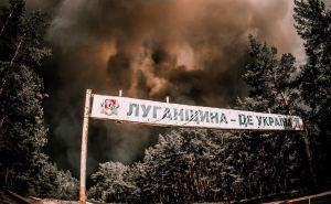 Космический масштаб. Опубликованы спутниковые снимки лесных пожаров на Луганщине, которые продолжаются с 6июля