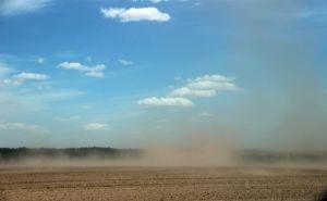 В регионе наблюдается суховей, в опасности урожай зерновых