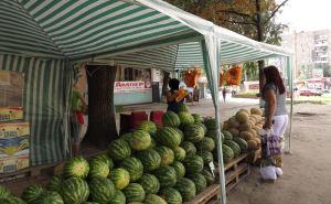 Как в Луганске купить вкусный арбуз и без нитратов. Советы специалистов
