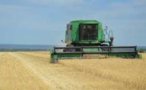 Аграрии Луганска собрали урожай озимой пшеницы на 90% площадей